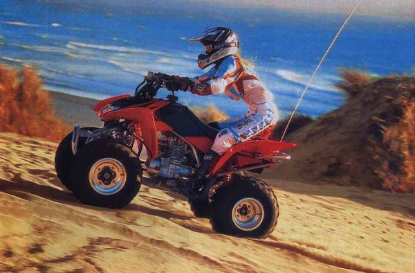 RC ATV Racing 1:24